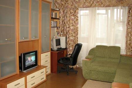 1 room cosy apartment in  Kiev - Kijev