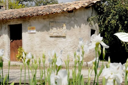 Azienda Agrituristica I GELSI - Haus