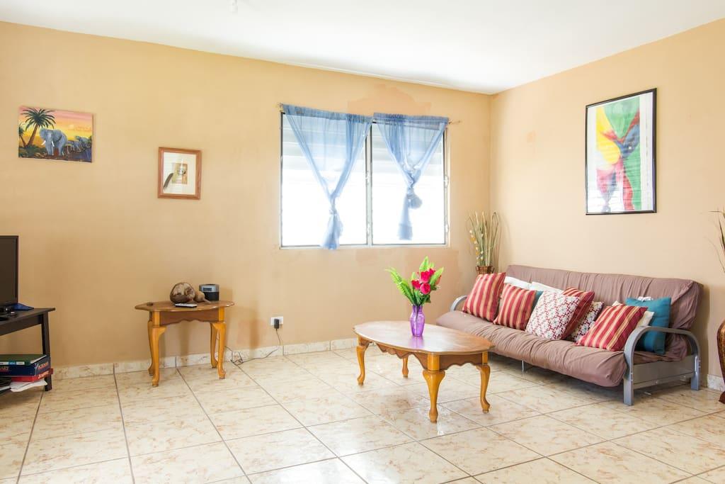 Living Room w/ Full Size Futon