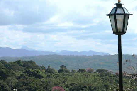 Vitalis- Energy - Garden - House