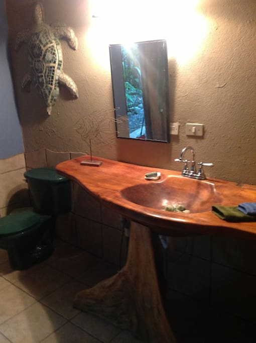 One of a kind sink carved from a tree trunk.  Garden shower through door caught in mirror's reflection.
