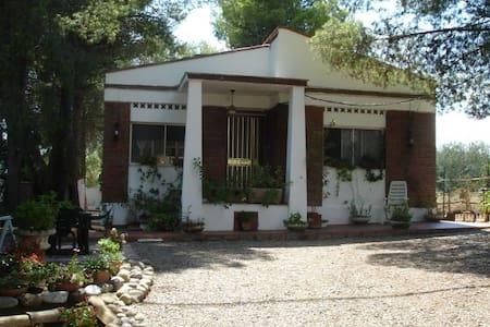 charming cottage in Basilicata - Pisticci