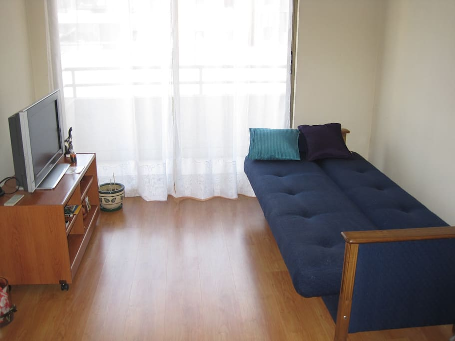 Bright and comfortable apartment. Sofa on the right is a futon, can accomodate for one person to sleep.