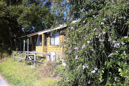 Cabin available for Blues Festival - Kabin