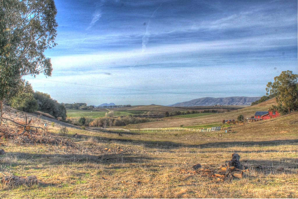 The view just 40 feet from the front door of local vineyards and the Morro mountain range.