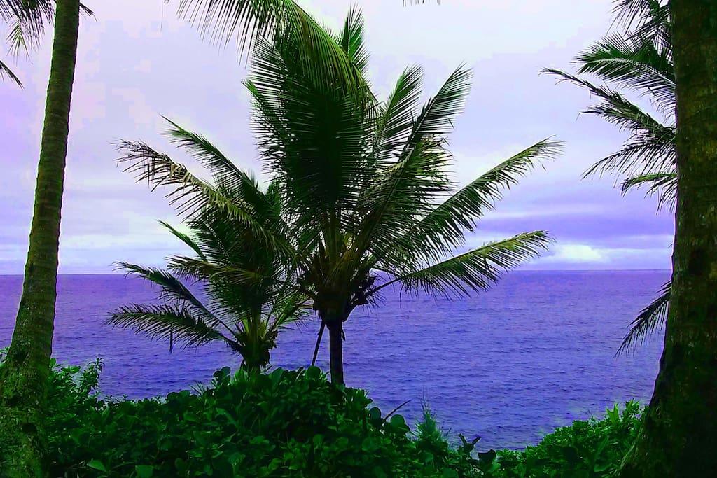 Kehena Beach View