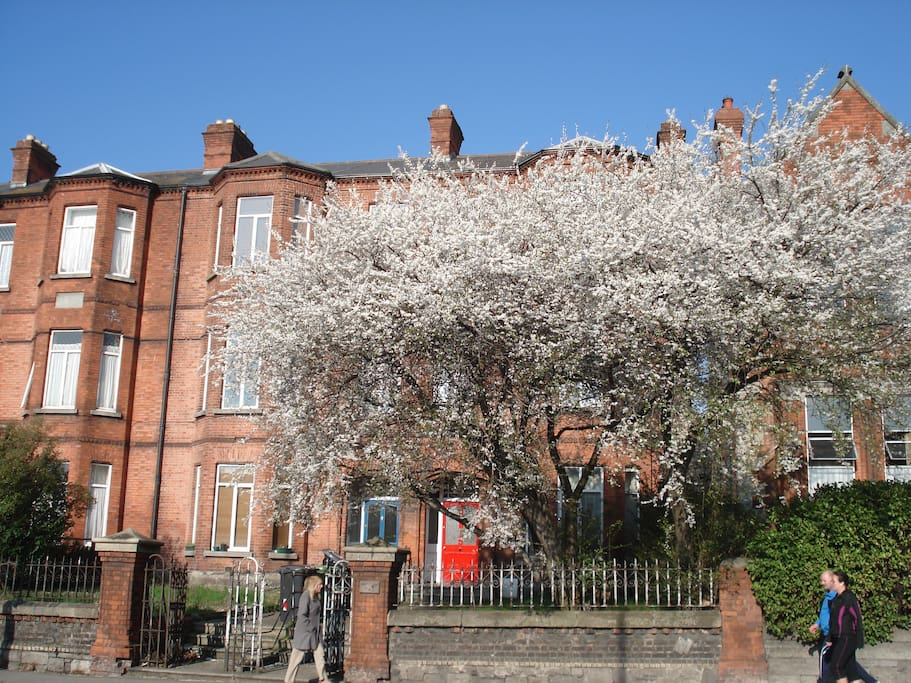 Beautful Victorian Red Brick Building in springtime