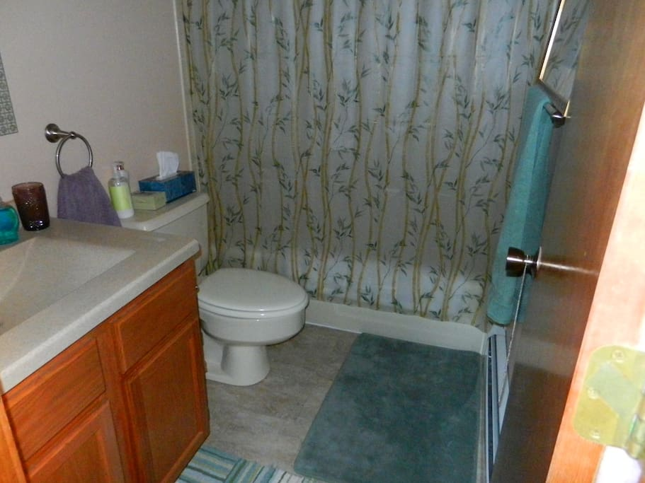 Your private bathroom with tub and shower New New New