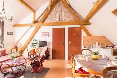 Bel appartement au coeur d'Alsace - Loft-asunto