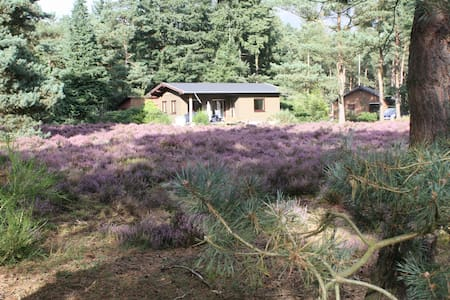 Cottage in Veluwe - Hus