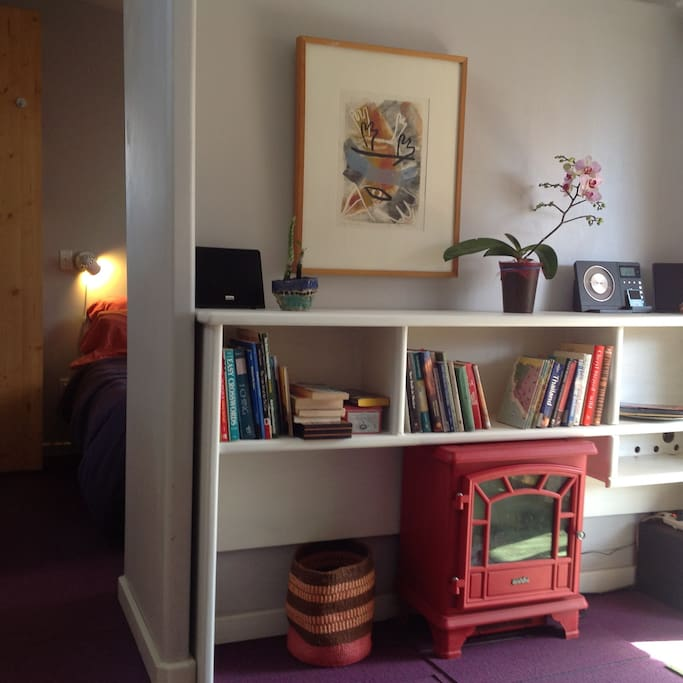 books, music and a electric fireplace for your amusement