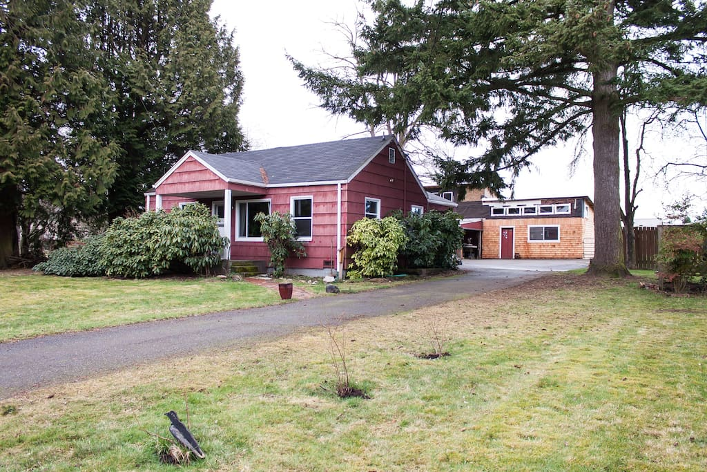 Fully fenced yard; pet friendly! Garden full of fresh veggies and fruit when in season.