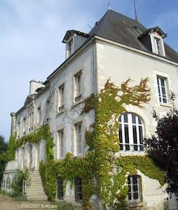 Pettit Château de Pellebuzan - Castello