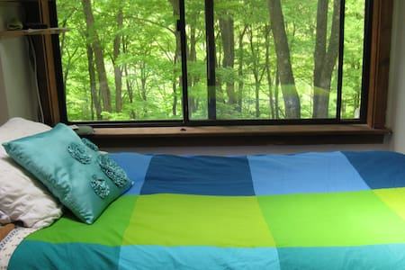 Treetop Retreat - for Clarity - Fast or Cleanse - Pound Ridge - Haus