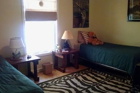 Charming room with twin beds - Pisgah Forest - House