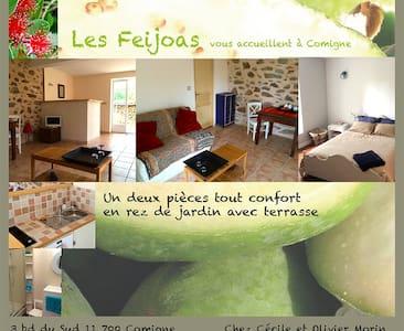 Appartement d'hôte: les Féïjoas - Apartment