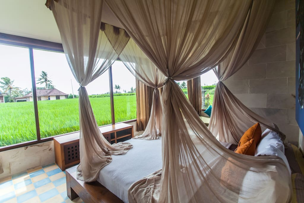 LUXURY Rice Paddy View Apartment!
