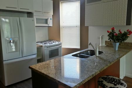 United Center VIP Travel (O'Hare, Midway, Loop) - Chicago - Apartment
