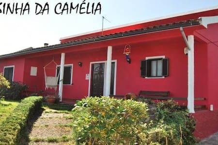 Casa com Jardim e Piscina - Casa