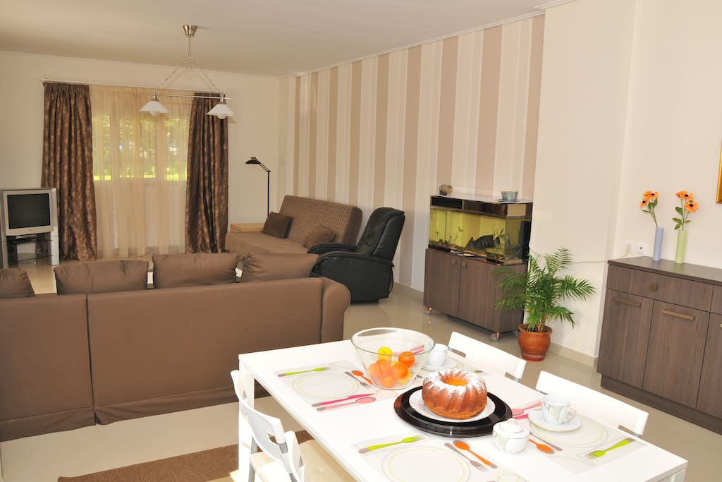 living room-closed sofa and couch- fish tank