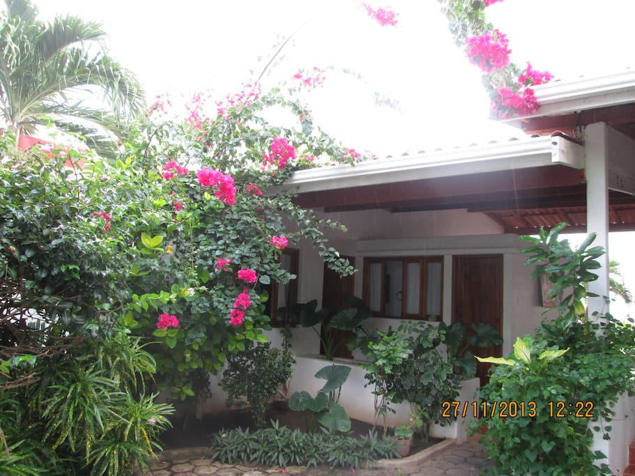 The garden side of the house