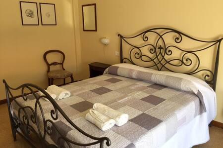 Affittacamere del Viaggiatore - Ancona