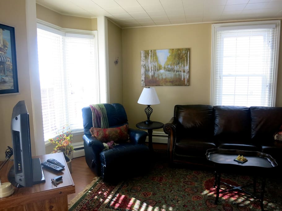 living room with leather furniture, plenty of reading material, games and satellite tv.