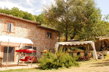 A peaceful refuge among olive trees - Bed & Breakfast