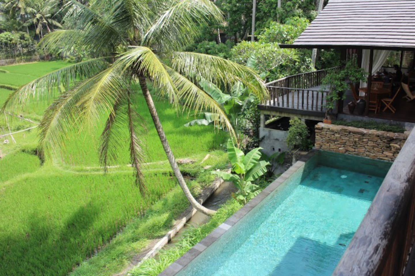 Aerial photo of the pool overlooking the rice fields.