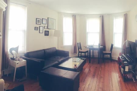 Sun-Drenched 1BR Steps to Central Sq! - Cambridge - Apartment
