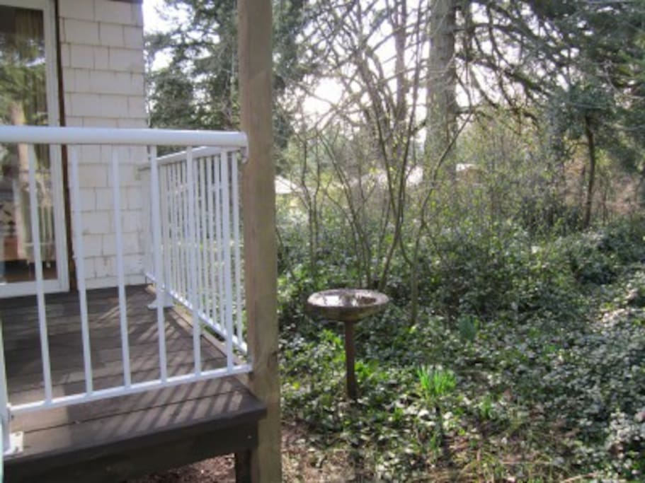 deck, bird bath; winter
