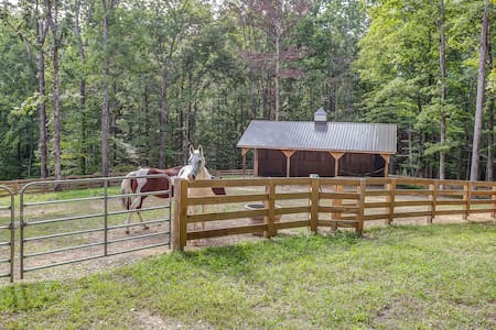 1BR Storybook Cottage, Charming Retreat on 8 Acres - Franklin - House