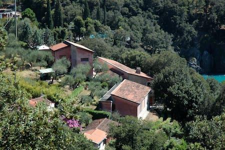 Villa con accesso privato al mare - Lerici - Villa