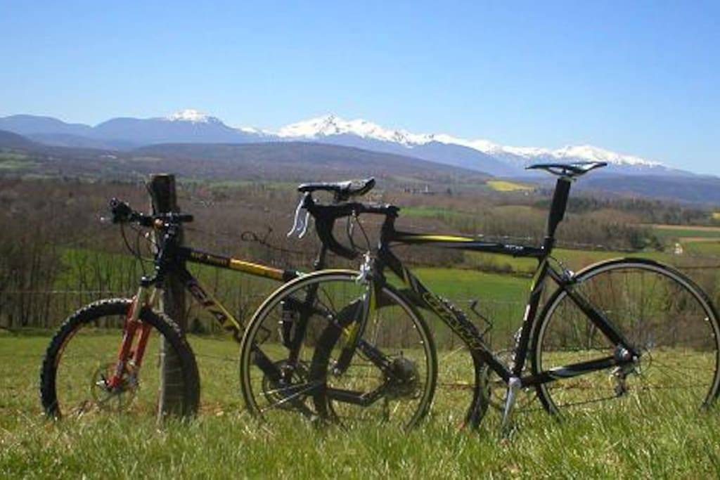 Cycling's our business come and enjoy