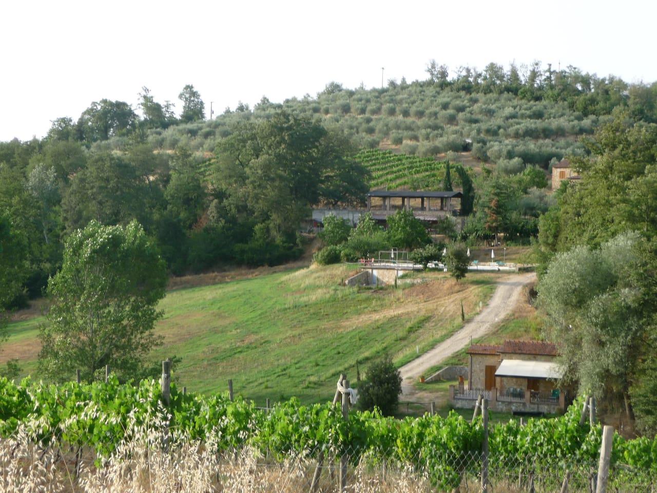 Agriturismo Siena Apartment 2 pax