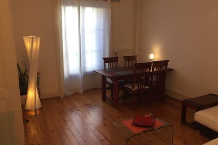 Nice apartment in Geneva - Carouge - Wohnung