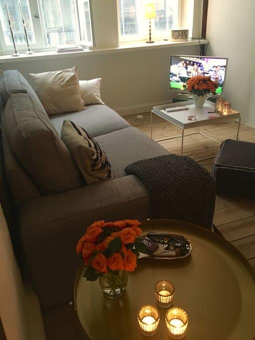 Livingrom with TV