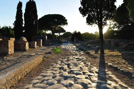 Located in Ostia Antica, at 20km from downtown, 9km from the Airport of Fiumicino, 4km from the waterside and only 1km from the archeological area and metro station, with its peacefulness the White Nest is the ideal shelter for your holiday in Rome.