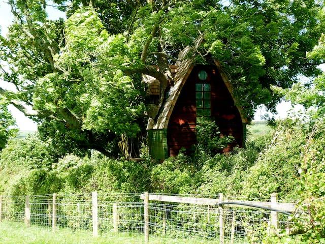 Tree Sparrow House, Cornwall. - Casa sull'albero
