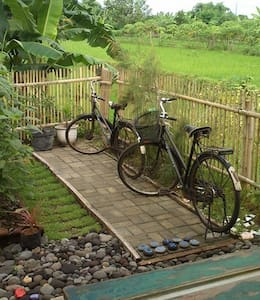 Experience and discover the real Yogyakarta with us! House of Nasi Bungkus is a home stay in the south of Yogyakarta run by a friendly Indonesian - Australian couple. Surrounded by rice paddies and only 10 minutes from the heart of Yogyakarta city.