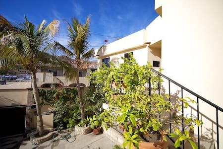 Roof, sun bathing area, bbq, cooking and hanging out roof garden. Fully equipped condominiums. Four blocks from the Marina, downtown fun and restaurants. Pool/Beach club access. Awesome service.