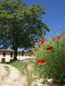 Enjoy your stay with us in Todi - Bed & Breakfast