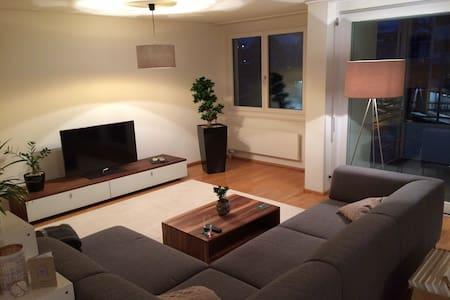 Stilvolle, helle und grosse 3.5-Zimmer-Wohnung - Zug - Apartment