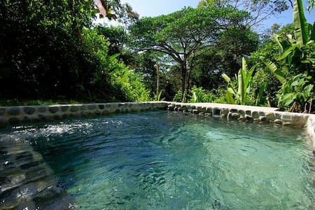 THE JUNGLE VILLA -Modern 1BD w/POOL - Dominical - House