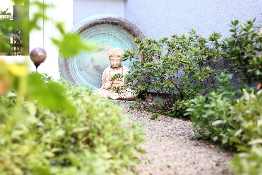 Reiki Garden Home courtyard view