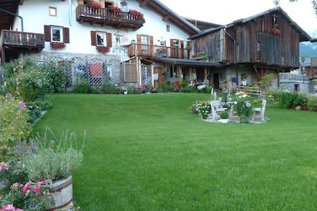Vacanze sulle dolomiti Val di Fassa - Apartment