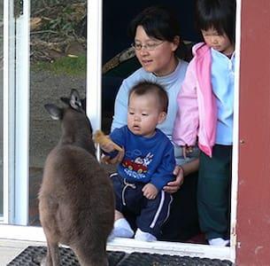 Kangaroo Unit: Fauna Australia - Dorm