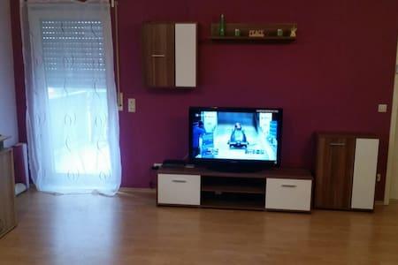 renovated apartment with Internet - Hockenheim