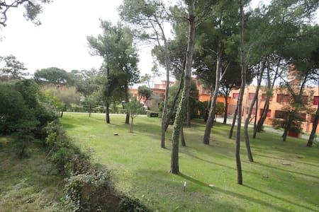 PALAZZINA SUL MARE - Marina di Pisa-tirrenia-calambr