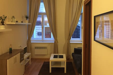 Cozy Apartement – Great location, Heart of Prague - Prag - Wohnung